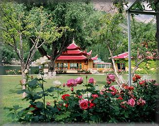 Shangrila Resort Skardu Contact Room Rent Booking